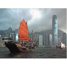Dukling - Icon of Hong Kong 【ADULT (Age 12+)】